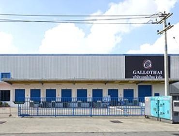 GALLOTHAI